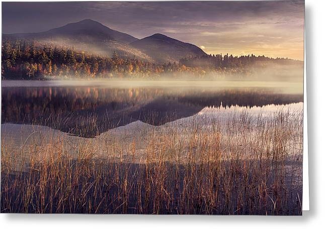 Mood Greeting Cards - Morning in Adirondacks Greeting Card by Magda  Bognar