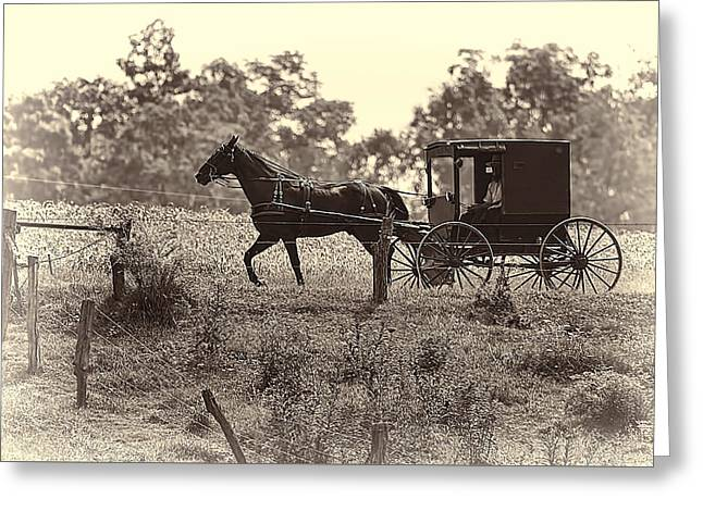 Up And Coming Greeting Cards - Morning in Amish Country Greeting Card by Marcia Colelli