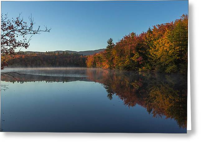 New Hampshire Leaves Greeting Cards - Morning in Dublin Greeting Card by Chris Fletcher