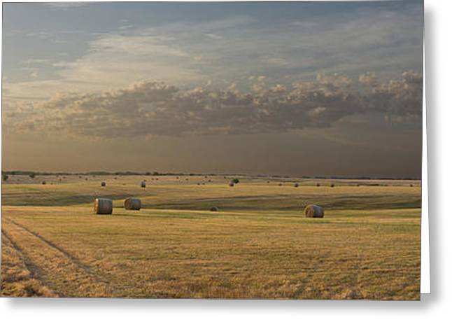Us Open Photographs Greeting Cards - Morning in Kansas Greeting Card by Dale Vande Griend