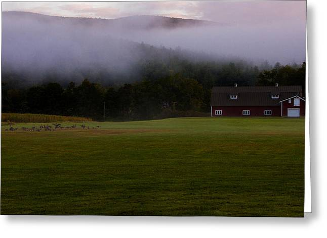 Massachussetts Greeting Cards - Morning in the Berkshires Greeting Card by Kathleen Odenthal