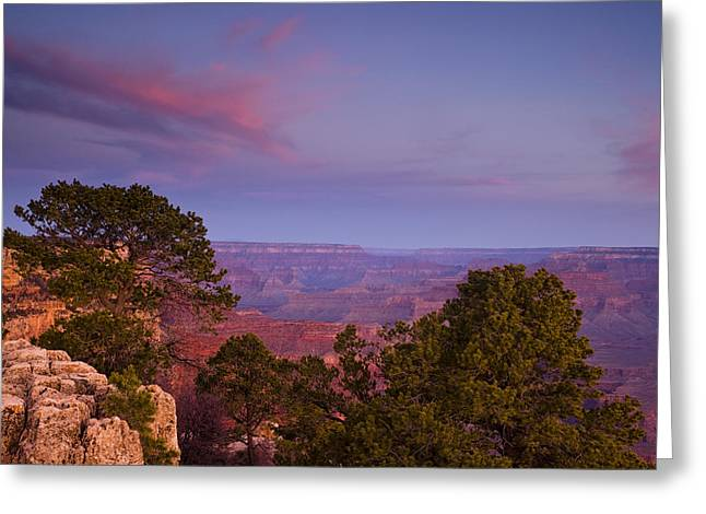 Pink Pastels Greeting Cards - Morning in the Canyon Greeting Card by Andrew Soundarajan