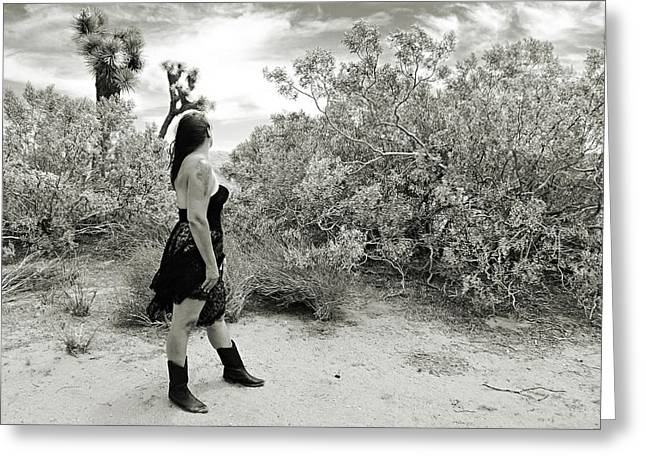 White Photographs Greeting Cards - Morning in the Desert Greeting Card by Cindy Nunn