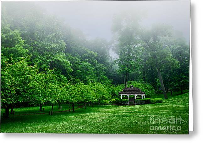 Mystical Landscape Greeting Cards - Morning In The Park Greeting Card by Mark Miller