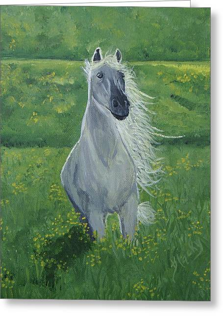 Gray Horse Greeting Cards - Morning In The Pasture Greeting Card by Donna Blackhall
