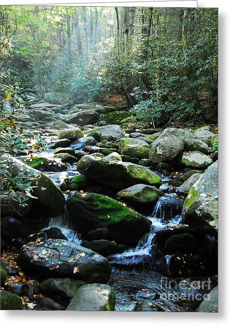 Gatlinburg Tennessee Greeting Cards - Morning Light 5 Greeting Card by Mel Steinhauer