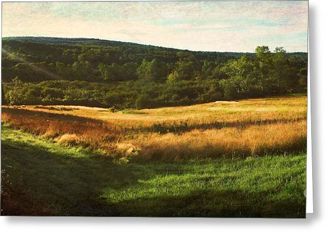 Rural Maine Roads Greeting Cards - Morning Light... A Field View From Kimball Pond Road Greeting Card by Joy Nichols