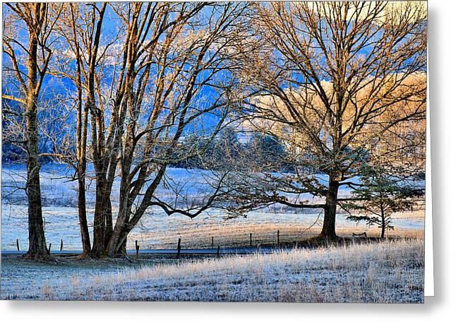 Gatlinburg Tennessee Greeting Cards - Morning Light Greeting Card by Carol R Montoya