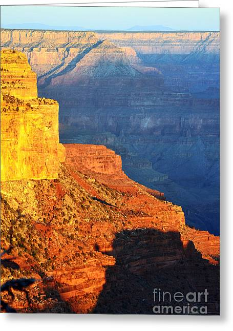 Arizona Greeting Cards - Morning Light Contrast Canyon Colors Grand Canyon National Park Greeting Card by Shawn O