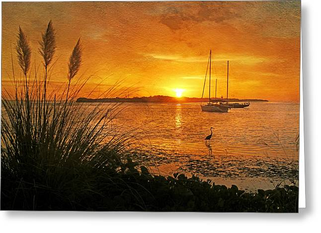 Yellow Sailboats Greeting Cards - Morning Light Greeting Card by HH Photography