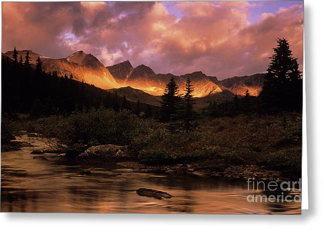 Fishing Creek Greeting Cards - Morning Light Maligne Pass Greeting Card by Bob Christopher