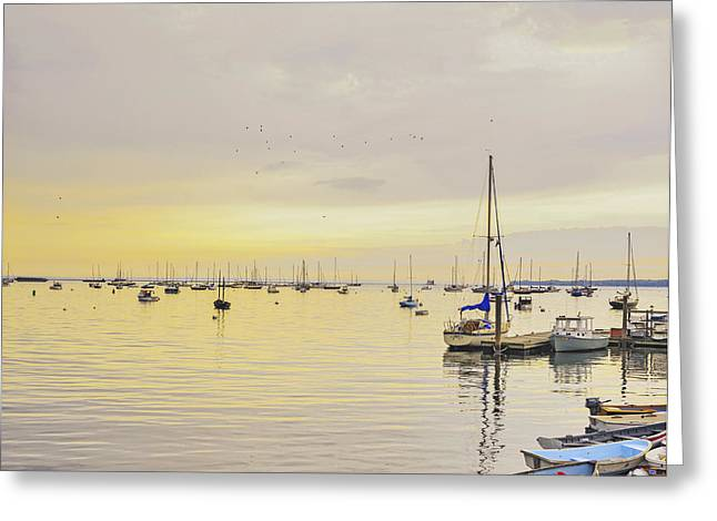 Yellow Sailboats Greeting Cards - Morning LIght Rockland Maine Greeting Card by Marianne Campolongo