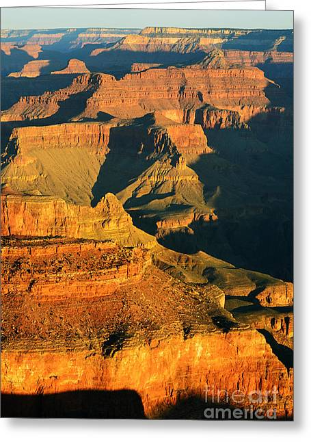 Arizona Greeting Cards - Morning Light Shadow Play Grand Canyon National Park Greeting Card by Shawn O