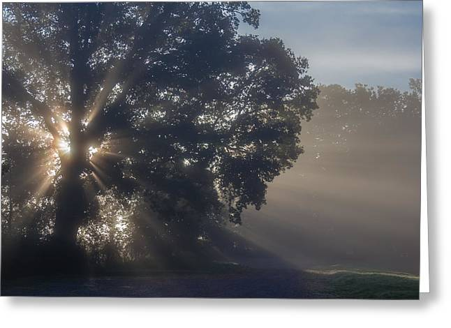 Clinton Greeting Cards - Morning light show Greeting Card by Chris Fletcher