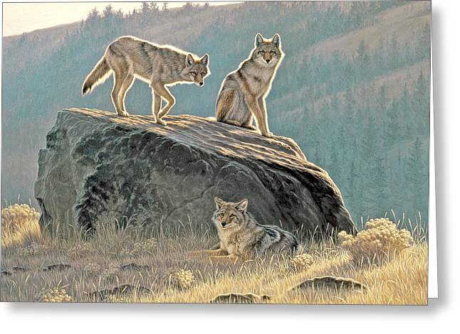 Wildlife Greeting Cards - Morning Lookouts Greeting Card by Paul Krapf