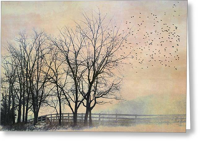 Kathy Jennings Photographs Greeting Cards - Morning Magic Greeting Card by Kathy Jennings