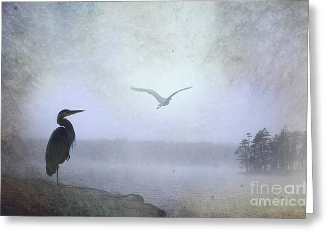 Thomas Vanselus Digital Art Greeting Cards - Morning Mist Along The Masagee Greeting Card by The Stone Age