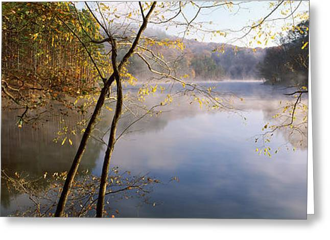 Midwest Scenes Greeting Cards - Morning Mist Around A Lake, Lake Greeting Card by Panoramic Images
