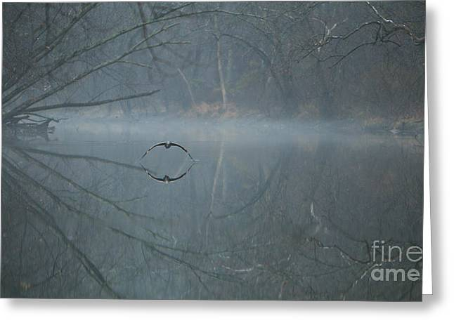 Recently Sold -  - Water Fowl Greeting Cards - Morning Mist by James Figielski Greeting Card by Paulinskill River Photography