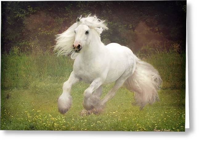 Horse Photographs Greeting Cards - Morning Mist C Greeting Card by Fran J Scott