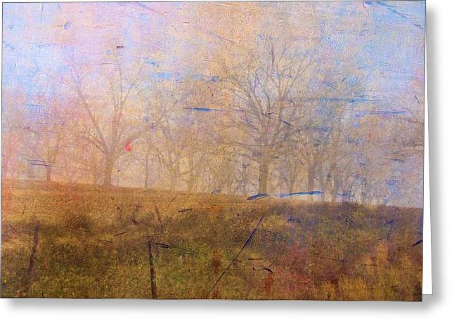 Abstract Digital Photographs Greeting Cards - Morning Mist Greeting Card by Jan Amiss Photography