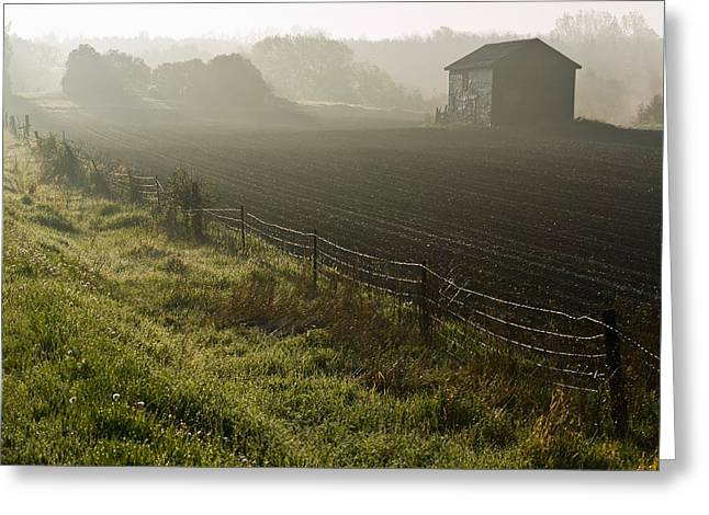 Morning Mist Over Field And Greeting Card by Jim Craigmyle
