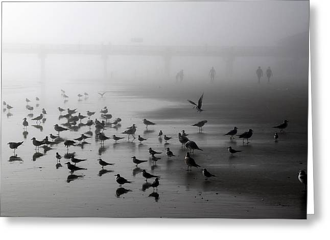 Ocean Art Photography Greeting Cards - Morning Monochrome Greeting Card by Ross Lewis