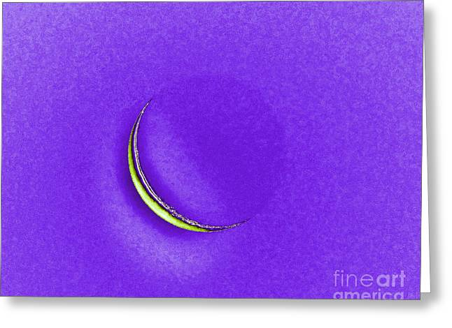 Luna Greeting Cards - Morning Moon Purple Greeting Card by Al Powell Photography USA