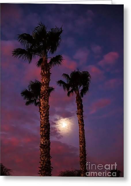 Morning Moon Greeting Card by Robert Bales