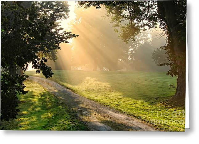 Morning On Country Road Greeting Card by Olivier Le Queinec