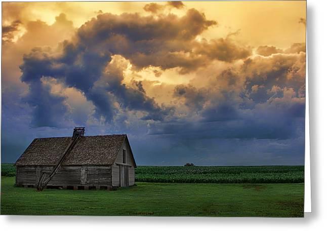 Conveyor Belt Greeting Cards - Morning on the Farm - Nebraska Sunrise Greeting Card by Nikolyn McDonald