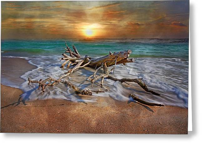 Flowing Greeting Cards - Morning Paradise Greeting Card by Betsy C  Knapp