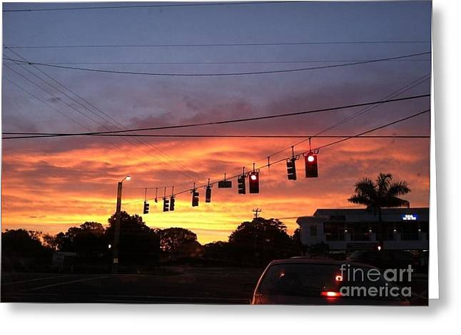 Paradise Road Greeting Cards - Morning Peace Greeting Card by Melissa Darnell Glowacki