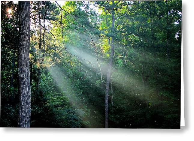 Greg Simmons Greeting Cards - Morning Rays Greeting Card by Greg Simmons
