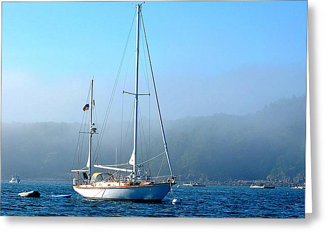 Sailboats In Harbor Greeting Cards - Morning Sail Greeting Card by Cynthia Pease