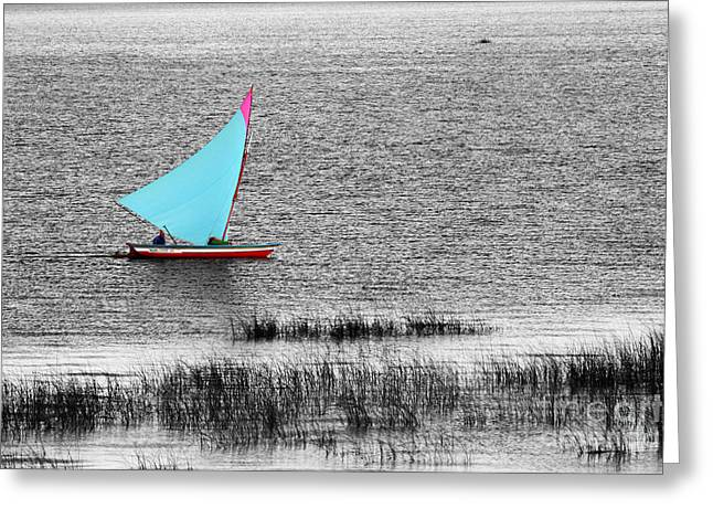 Reed Bed Greeting Cards - Morning Sail Greeting Card by James Brunker