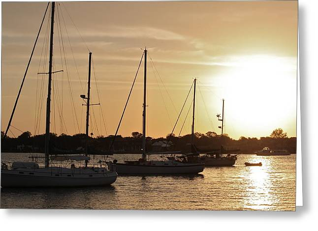 Sailboat Images Greeting Cards - Morning Sails Greeting Card by Valerie Tull