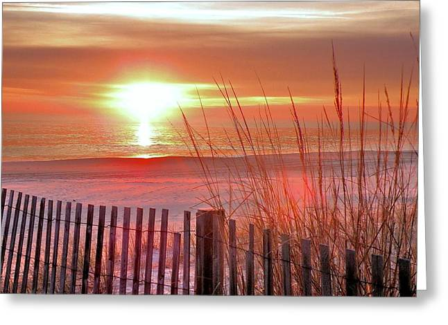 Surf City Greeting Cards - Morning Sandfire Greeting Card by Kim Bemis