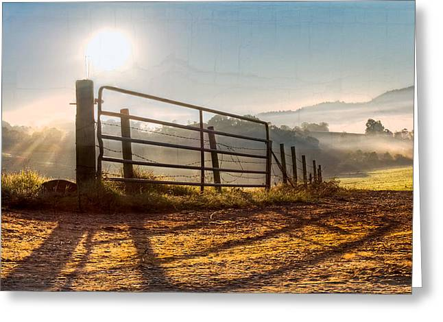 Morning Shadows Greeting Card by Debra and Dave Vanderlaan