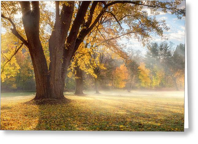 Connecticut Landscapes Greeting Cards - Morning Shadows Square Greeting Card by Bill  Wakeley