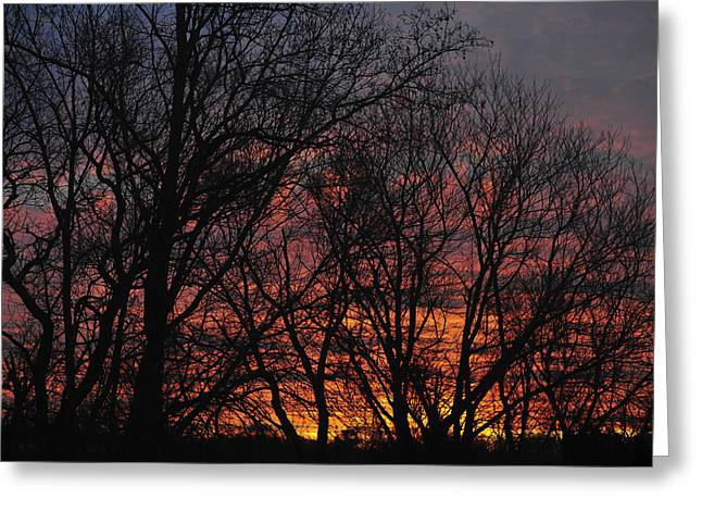 Kitchen Photographs Greeting Cards - Morning Skies Greeting Card by Terry DeLuco