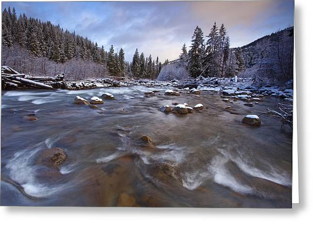 River Scenes Greeting Cards - Morning Snowlight Greeting Card by Darren  White