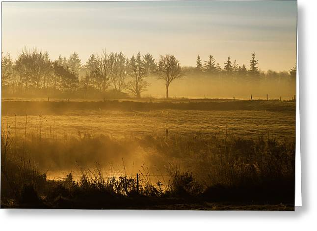 Quietly Greeting Cards - Morning Softly Greeting Card by Odd Jeppesen