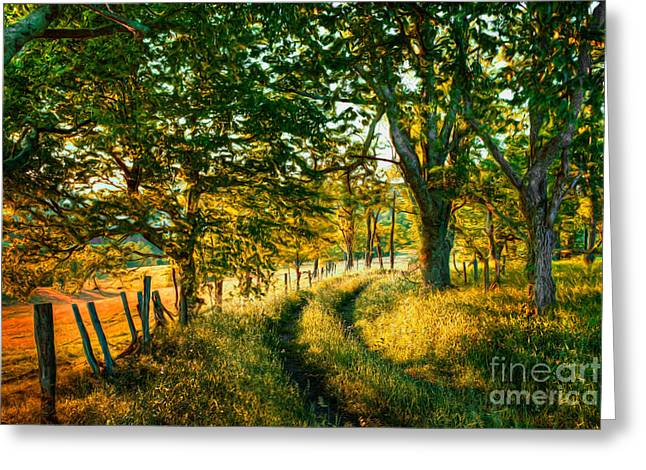Paint Photograph Greeting Cards - Morning Sun on a Country Road II Greeting Card by Dan Carmichael