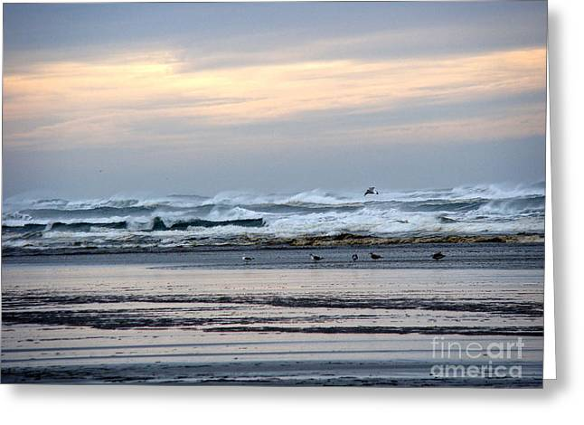 Sunset Prints Greeting Cards - Morning Sunrise Greeting Card by Beverly Guilliams