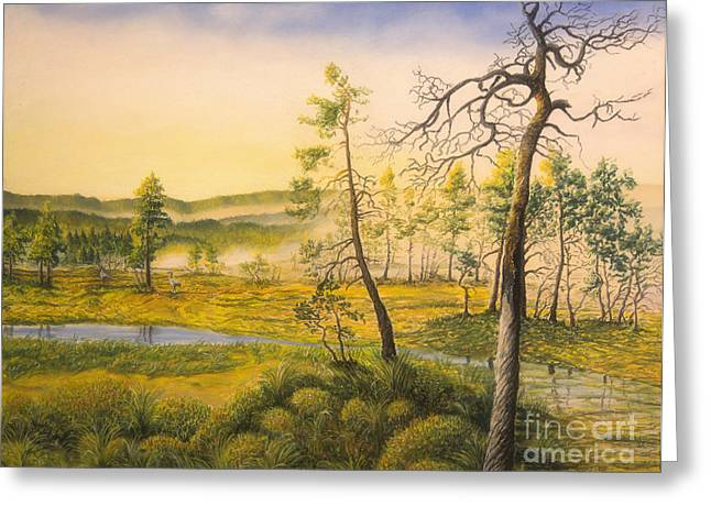 Moss Green Pastels Greeting Cards - Morning swamp Greeting Card by Veikko Suikkanen