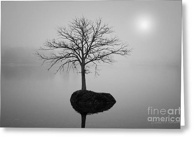 Mystical Landscape Greeting Cards - Morning Tranquility Greeting Card by David Gordon