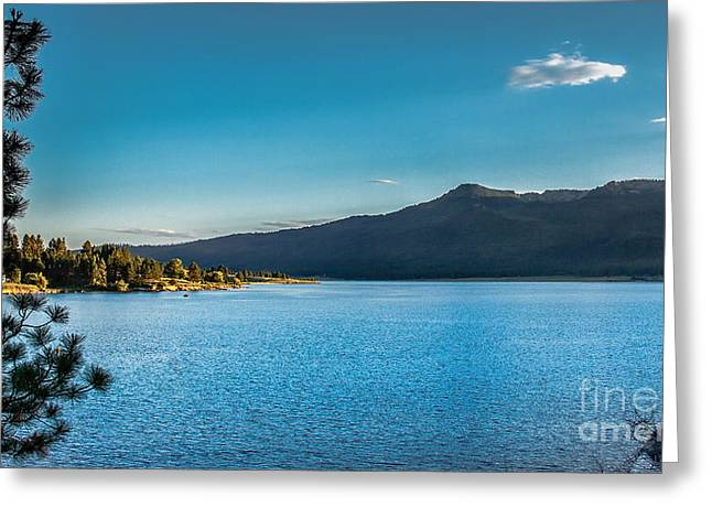 Morning View Of Cascade Reservoir  Greeting Card by Robert Bales