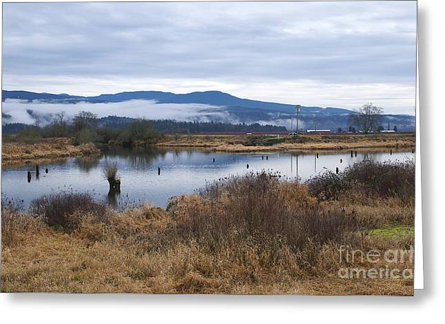 Tidal River Greeting Cards - Morning Walk Along the South Alloutte River Greeting Card by Sharon  Talson