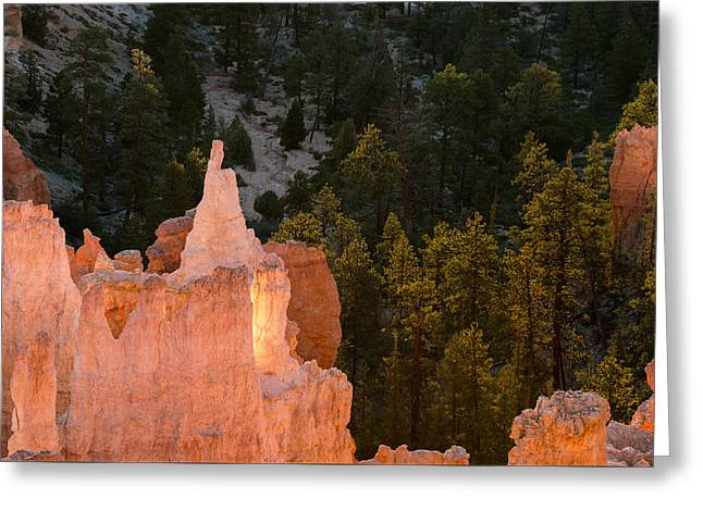 Colorado Plateau Greeting Cards - Morning Hoodoos Greeting Card by Joseph Smith